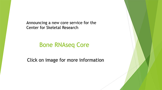 Bone RNAseq Core
